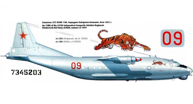 Модель самолета Антонов Ан-12БК ВВС СССР 1:100 AV0053